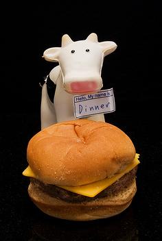hamburger-toy1